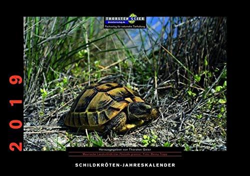Schildkröten-Jahreskalender 2019: Herausgegeben von Thorsten Geier