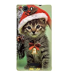 Printvisa Premium Back Cover Cat With Bell Wearing Christmas Cap Design For Micromax Canvas Nitro 2 E311::Micromax Canvas Nitro 2 (2nd Gen)