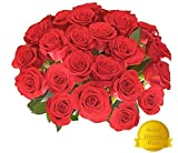Gifts Flowers Food Best Deals - Flowers for delivery on Amazon Bouquet of 25 RED Fresh Roses Delivered with Free Flower Food Packet. Long Stem Rose in Bud Form. Guaranteed Best Flower Gift for Birthday Valentines Mothers Day Wedding
