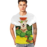 Manadlian Herren T-Shirts mit Tiere&Hunde Wassermelone Aufdruck ♥ Lustige Jungs Kurzarm Männer T-Shirts 3D Tiere... preisvergleich bei billige-tabletten.eu