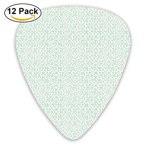Flourish Pattern With Blossoming Hibiscus Flowers Springtime In Hawaii Theme Decorative Guitar Picks 12/Pack