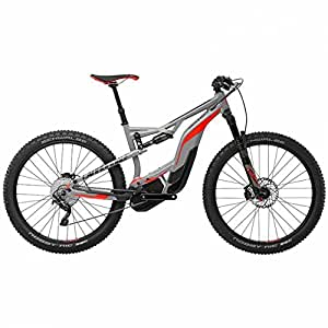 Cannondale Moterra 2 grey