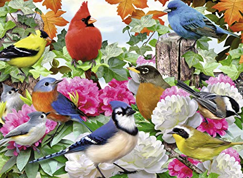 Ravensburger Garden Birds - Puzzle (500 piezas)