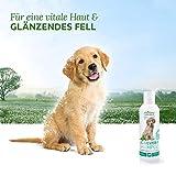 AniForte Aloe Vera Shampoo mild 400 ml Hundeshampoo parfümfrei- Naturprodukt für Welpen - 3