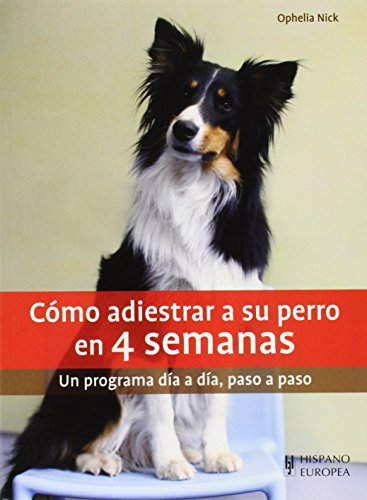 Cómo Adiestrar A Su Perro En 4 Semanas