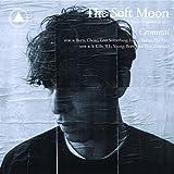 Criminal   Soft Moon