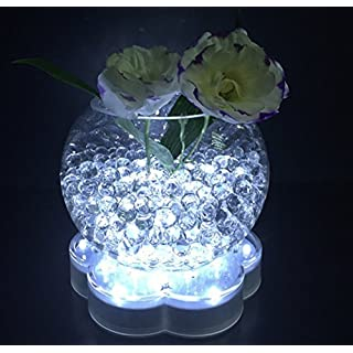 Acmee? 6in Acrylic Flower Shape LED Vase Base Light with 23 Super Bright Leds for Vases Table Decoration (White Light) by Acmee