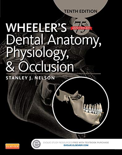Wheeler's Dental Anatomy, Physiology and Occlusion, 10e por Stanley J. Nelson DDS  MS