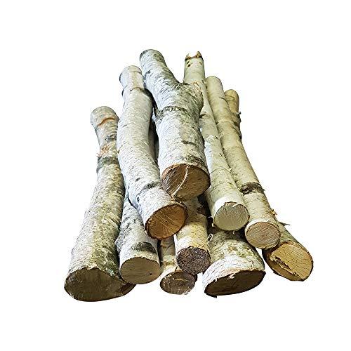 10 Birkenäste - weiße Äste mit Einer Länge von ca. 50 cm und Einer Breite von 1-3 cm - wunderbar zur Dekoration in Bodenvasen