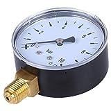 Sharplace Misuratore Pressione Manometro Dell'olio D'aria O Acqua 1/4 ''2.3'' Faccia 10 Bar