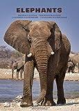 Calendrier d'anniversaire 'ELEPHANTS' avec des photos perpétuels expressives des fascinants d'éléphants d'Afrique (pages de 12 mois|A3– 42x29.7cm), en français (+allemand, anglais et italien)