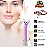 [2017 neue Version] Jingfude Spray Feuchtigkeit stark Electric Pore Reiniger Peeles und Resurface Nase Mitesser Whiteheads Akne Remover Skin Care Straffung Gesichts-Beauty Salon Device Instrument Machine USB-Aufladung (lila)