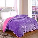Volltonfarbe Coral Fleece Bettbezug,Einzelstück Dick Flanell Student Bett garnitur,Bettbezug Plüsch Winter Warme-A 100x150cm(39x59inch)