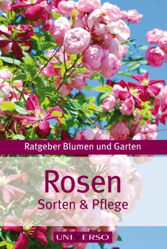 ratgeber-garten-rosen-sorten-pflege