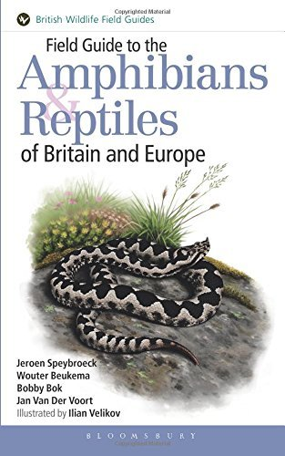 Field Guide to the Amphibians and Reptiles of Britain and Europe (British Wildlife Field Guides) by Jeroen Speybroeck (2016-07-28)