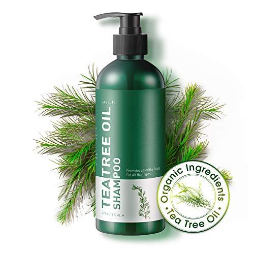 Shampoo all'olio puro di tea tree aprilis | shampoo naturale ed organico, antiforfora, antimicotico e antibatterico, per prurito e cuoio capelluto secco, irritato e friabile, previene la formazione di pidocchi, per uomini e donne | 473 ml (16 fl. oz.)