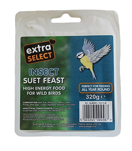 Extra Select Wild Bird High Energy Suet Block Seed and Insect, Nourriture d'oiseau sauvage - Lot de 6 x 320 g