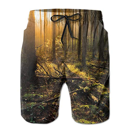 MIOMIOK Mens Beach Shorts Swim Trunks,Misty Morning In The Forest with Sun Rays Mother Earth Foliage Dawn Picture Brown Fern Green_2,Summer Cool Quick Dry Board Shorts Bathing SuitL