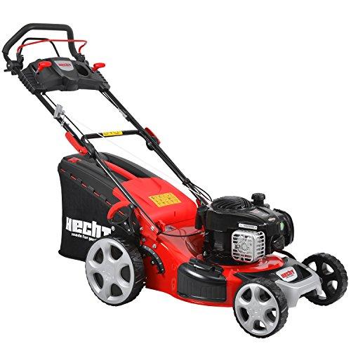 hundeinfo24.de HECHT Benzin-Rasenmäher 5494 SB Briggs & Stratton Benzin-Mäher (2,9 kW (4,0 PS), Schnittbreite 46 cm, 60 Liter Fangkorbvolumen, 7-fache Schnitthöhenverstellung 25-75 mm, Radantrieb)