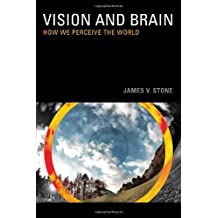 Vision and Brain – How we Perceive the World