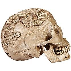 De Tamaño Natural 1: 1 Cráneo Humano Réplica De Modelo De Talla Esqueleto Médico Anatómica