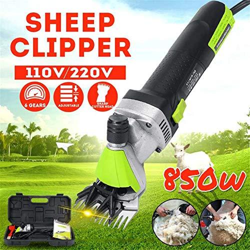 QZMX Clipper 506-488-724