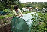 Haxnicks Grower Frame Grow Tunnel & Poly Cover Mini Greenhouse 3m x 1m x 1m