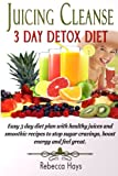 Juicing Cleanse 3 Day Detox Diet: Easy 3 Day Diet Plan With Healthy