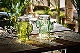 TFH LED Windlicht Glas Kaktus 2er Set Tischbeleuchtung Gartenbeleuchtung modern ausgefallen Tischdeko Gartendeko