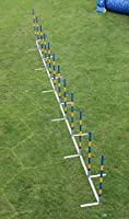FCI Agility Salom, callieway® AGI Slalom Agility Turnier Slalom/Agility Weaves droit 12 x 60 cm