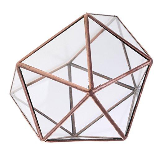D DOLITY Klare Geometrische Glas Terrarium Schmuckschatulle Gewächshaus Pflanzgefäß Kerzenhalter...