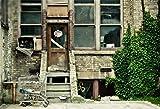 YongFoto 3x2m Vinilo Fondo de Fotografia Ric Shabby Chic Old House Puerta de madera de la ventana de la vendimia Green Vine Carro de supermercado Telón de Fondo Fiesta Niños Boby Boda Adulto Retrato Personal Estudio Fotográfico Accesorios