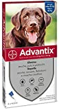 advantix Bayer 4484286, Spot-on Per Cani Oltre 25 kg fino a 40 kg, 4 x 4 ml by Bayer (Div. Sanita'Animale)