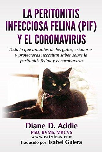 La peritonitis infecciosa felina (PIF) y el coronavirus: Todo lo que amantes de