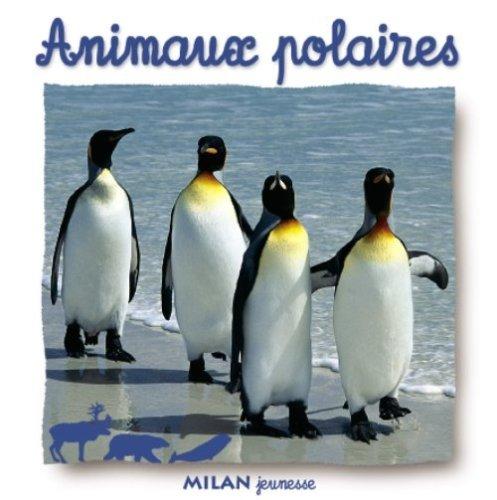 animaux-polaires