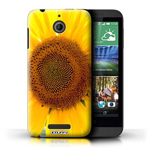Kobalt® Imprimé Etui / Coque pour HTC Desire 510 / Papillon conception / Série floral Fleurs Tournesol