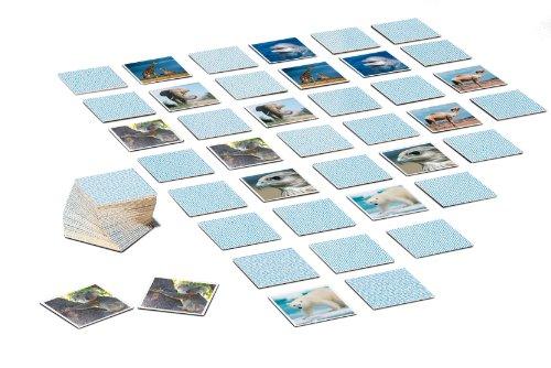 Ravensburger-00519-tiptoi-memory-Rekorde-im-Tierreich