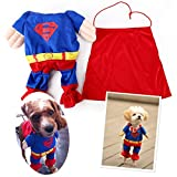 EQLEF® Superman Dog Cat Puppy Halloween Costume Abbigliamento Pet Abbigliamento Superdog Dress Up - Pet Supplies (medio (collo: 25-30cm))