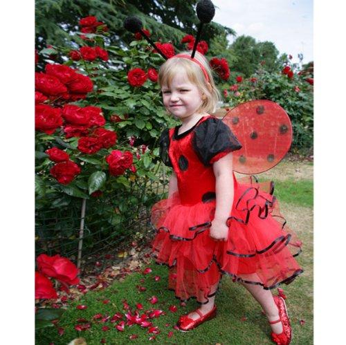 Ladybird Dress - Kleinkind: 18 bis 24 Monate [Spielzeug]