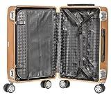 Packenger Alu Professional Koffer, Größe M mit 45 Liter, Gold - 2