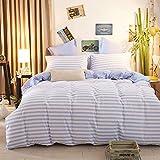 Bettwäsche Bettbezug AB Version Streifen 3-teilig Fein Bedruckt Tröster Set Qualität weicheste Bettwäsche Waschbar All-Saison Bettbezug, B, Twin