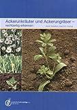 Ackerunkräuter und Ackergräser  - rechtzeitig erkennen - Horst Klaßen, Joachim Freitag