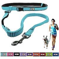 [Gesponsert]Pawtitas Reflektierende, gepolsterte, Antischock-Outdoor-Trainingsleine zum freihändigen Laufen mit dem Hund Blaugrün farbe