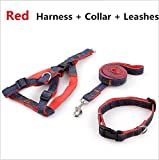 TYJY Corda Stereotipata Colletto Resistente all'Usura Cowboy Cucito Traction Rope Cinghie Pettorali Collar Set Jean Harnesses for Dog, S