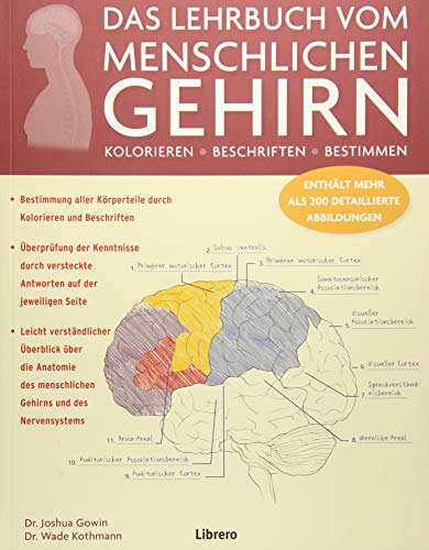 DAS LEHRBUCH VOM MENSCHLICHEN GEHIRN: Ein Einblick in Gehirn und Nervensystem des Menschen -