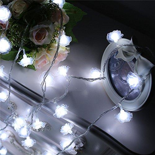 ANGTUO 3.2M 30 LED della Rosa stringa Fiore Fata della luce della lampada per il Giardino, Natale Matrimoni Festival