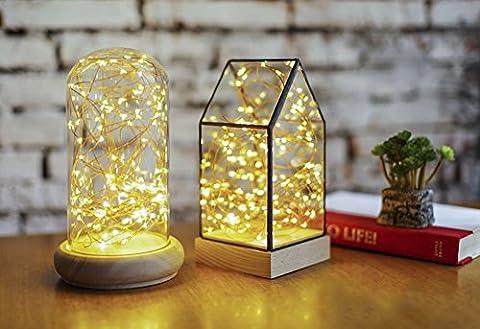 LED Lichterkette, ougilay 33ft 100LED Wasserdicht Warm Weiß Kupfer Draht Starry Licht für drinnen oder draußen - String Light+Remote