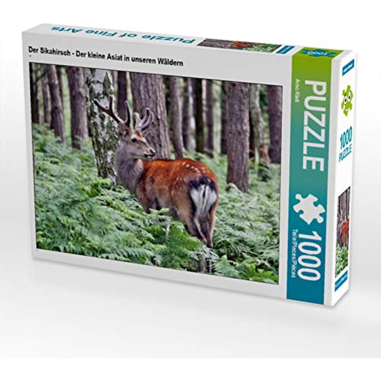CALVENDO Puzzle Der Sikahirsch - Der Kleine Asiat in in in unseren Wäldern 1000 Teile Lege-Grösse 64 x 48 cm Foto-Puzzle Bild Von Klatt Arno f9f25b