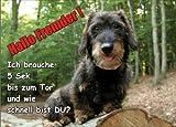 INDIGOS UG - Türschild FunSchild - SE416 DIN A5 ACHTUNG Hund Dackel - für Käfig, Zwinger, Haustier, Tür, Tier, Aquarium - aus hochwertigem Alu-Dibond beschriftet sehr stabil