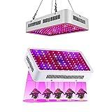 Risingmed 1000W LED Grow Light Vollspektrum für Indoor wachsenden Gewächshaus Hydroponische Gemüse und Blumen